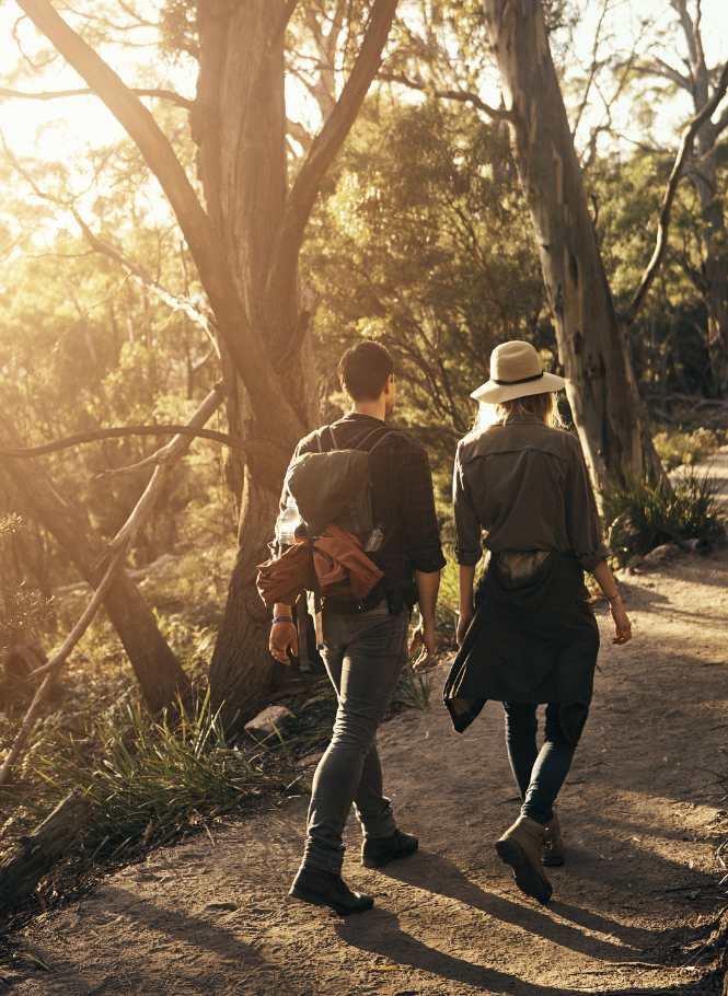 Couple bush walking against sun drenched background